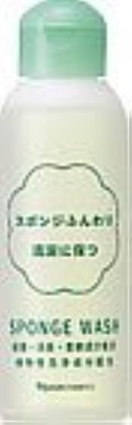 チラチラする間違い香ばしいナリス スポンジウォッシュ N 80ml×2本セット