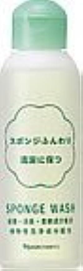 強化永久ゴシップナリス スポンジウォッシュ N 80ml×2本セット