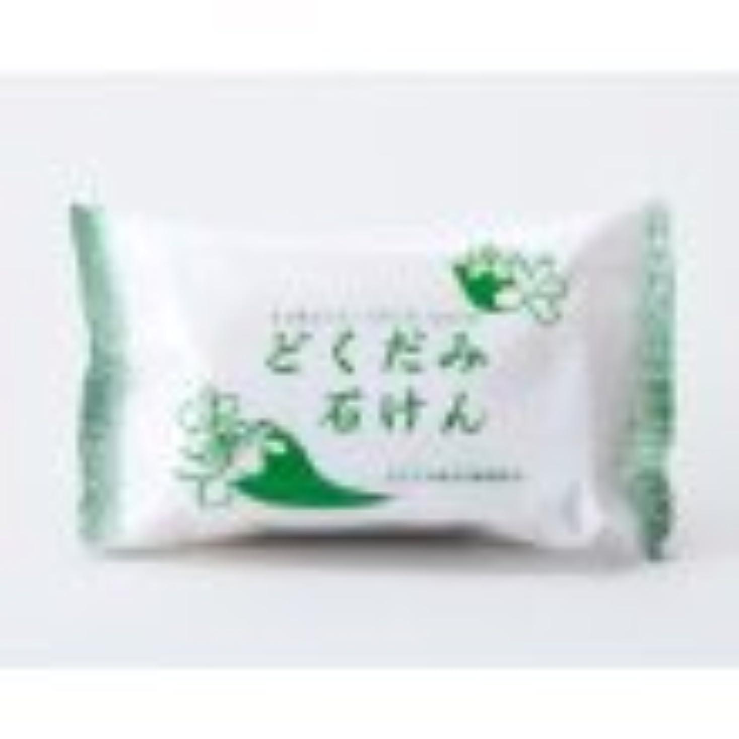 フルーツ野菜エッセンス極貧地の塩社 DNスキンソープ(どくだみ)130g×12