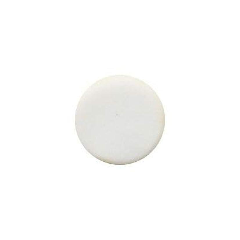 導体床を掃除する風景ミラージュ パウダー スペリオールシリーズ S/P ホワイト 14.5g