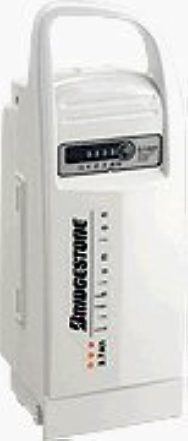 蚊ピクニックをする命令的ブリジストン電動自転車(F895053) バッテリー電池交換