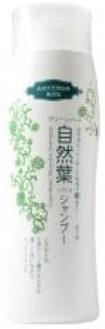 ヒープ近代化する母音グリーンノート 18種天然アミノ酸 自然葉シャンプー 300ml   6本セット