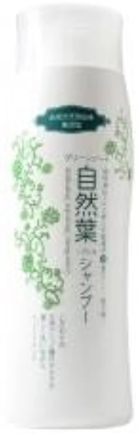 レザー阻害する正午グリーンノート 18種天然アミノ酸 自然葉シャンプー 300ml   6本セット
