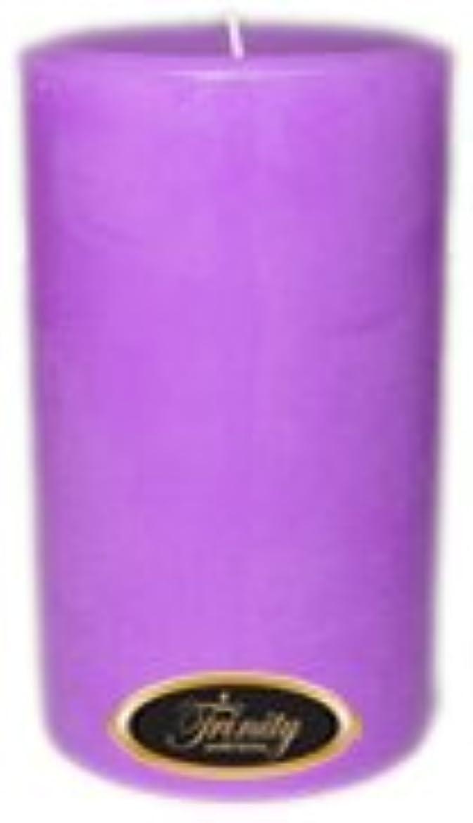設計図投資彼女Trinity Candle工場 – ラベンダー – Pillar Candle – 4 x 6