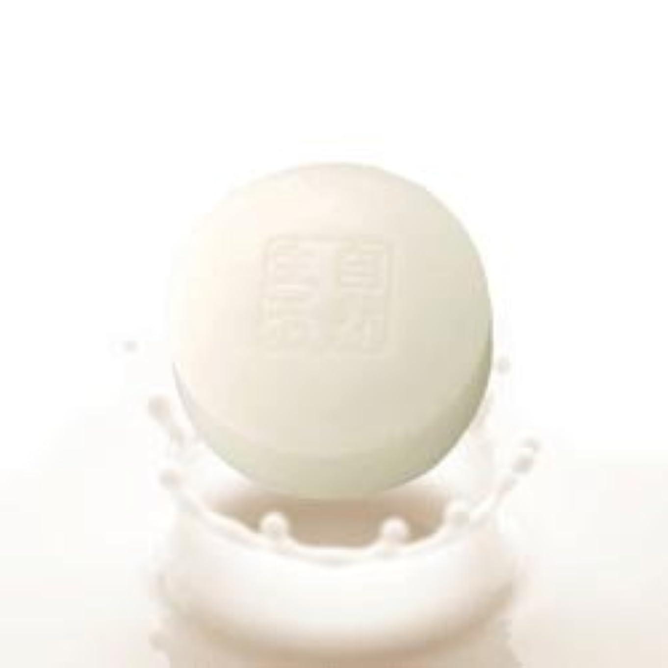 原子絶縁するアパート豆腐の盛田屋 豆乳せっけん 100g