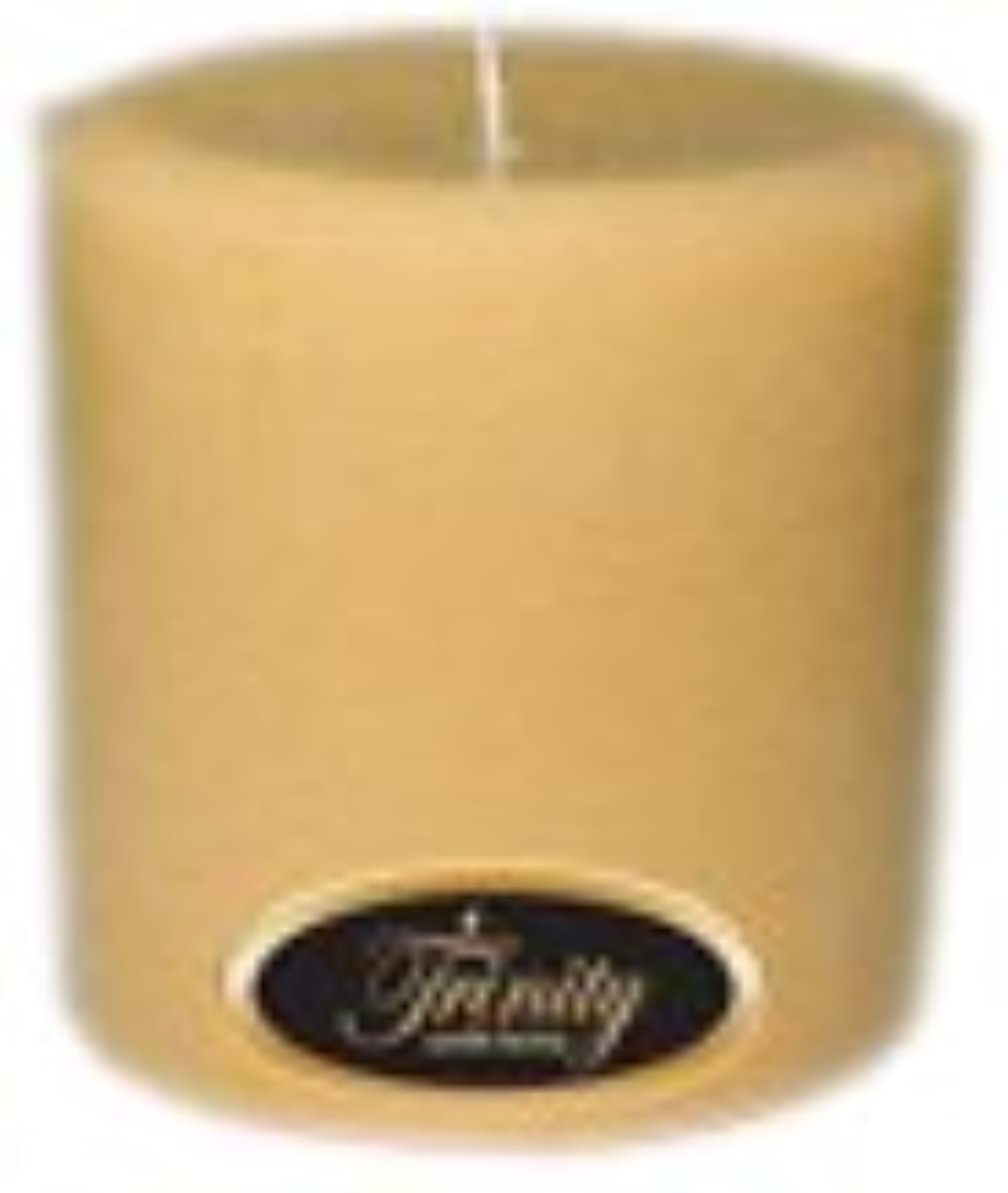 独特の機密好きであるTrinity Candle工場 – レザー – Pillar Candle – 4 x 4