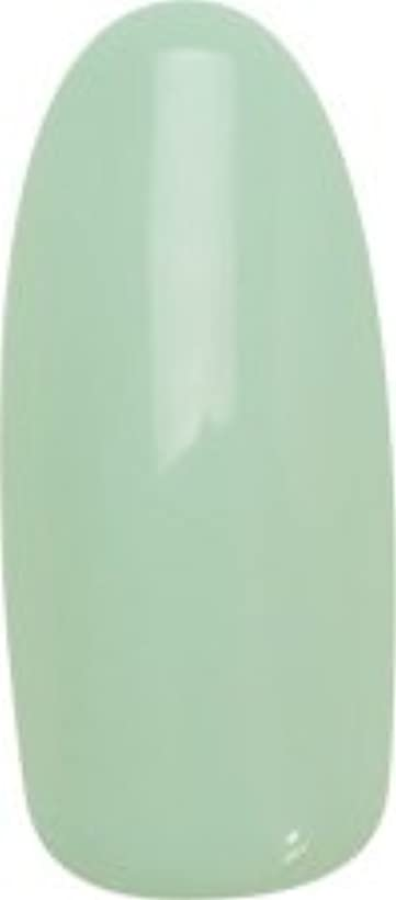 ★para gel(パラジェル) デザイナーズカラージェル 4g<BR>DL02 アイランドグリーン
