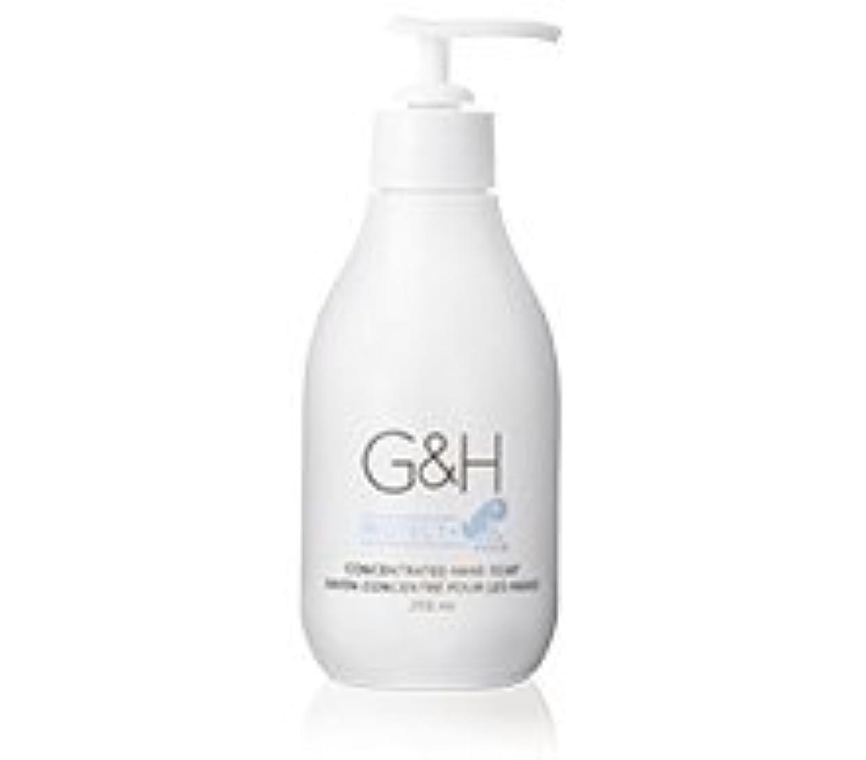 お客様蒸気政策アムウェイ G&H プロテクト+ ハンドソープ 250mL