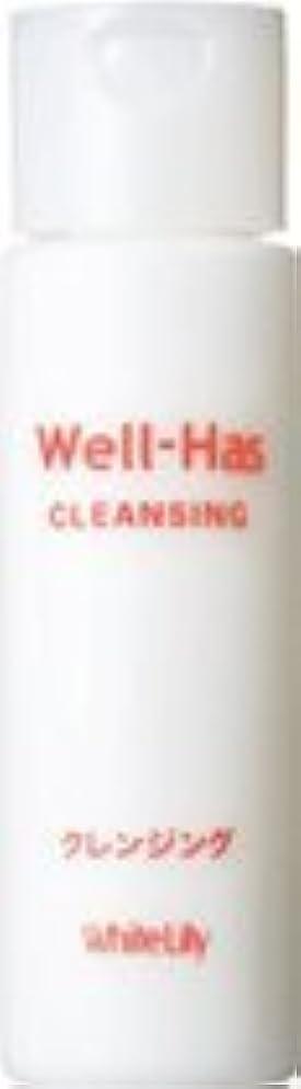 福祉のヒープペインギリックホワイトリリー Well-Has クレンジング 150g