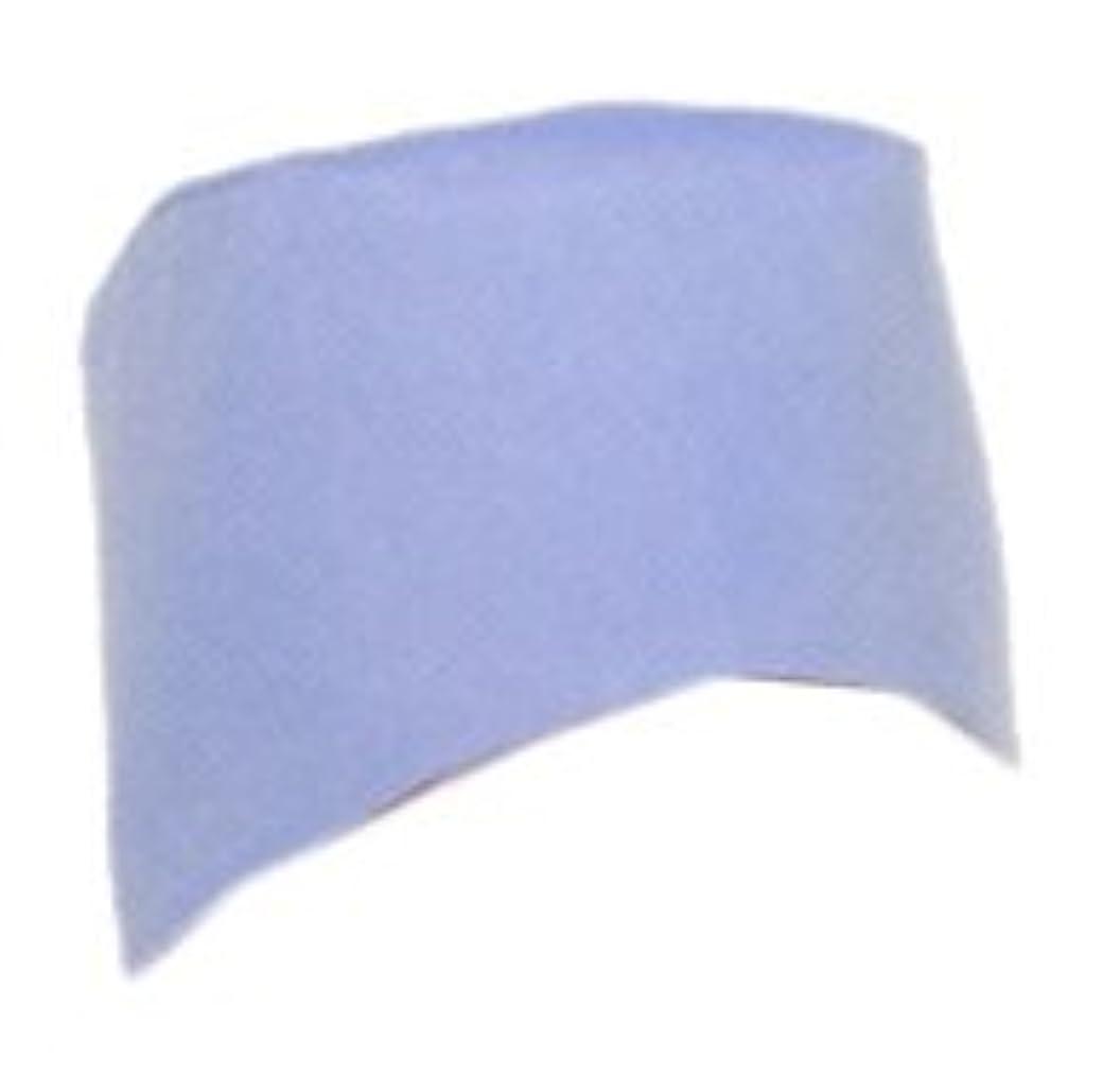 パワー交換可能思いつくナガイレーベン NAGAILEBEN 男子手術帽(2枚組) AD-501(フリー) ブルー