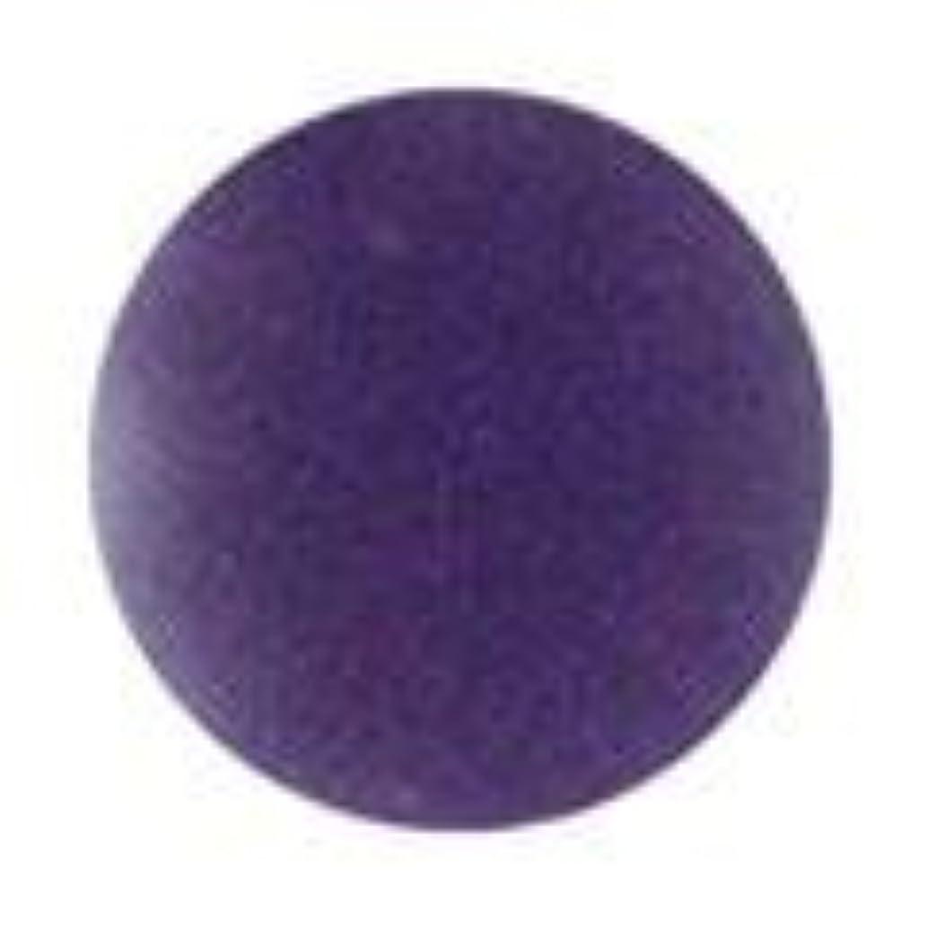 発疹ペパーミント報いるJessica ジェレレーション カラー 15ml  529 ビーナスワズハーネーム