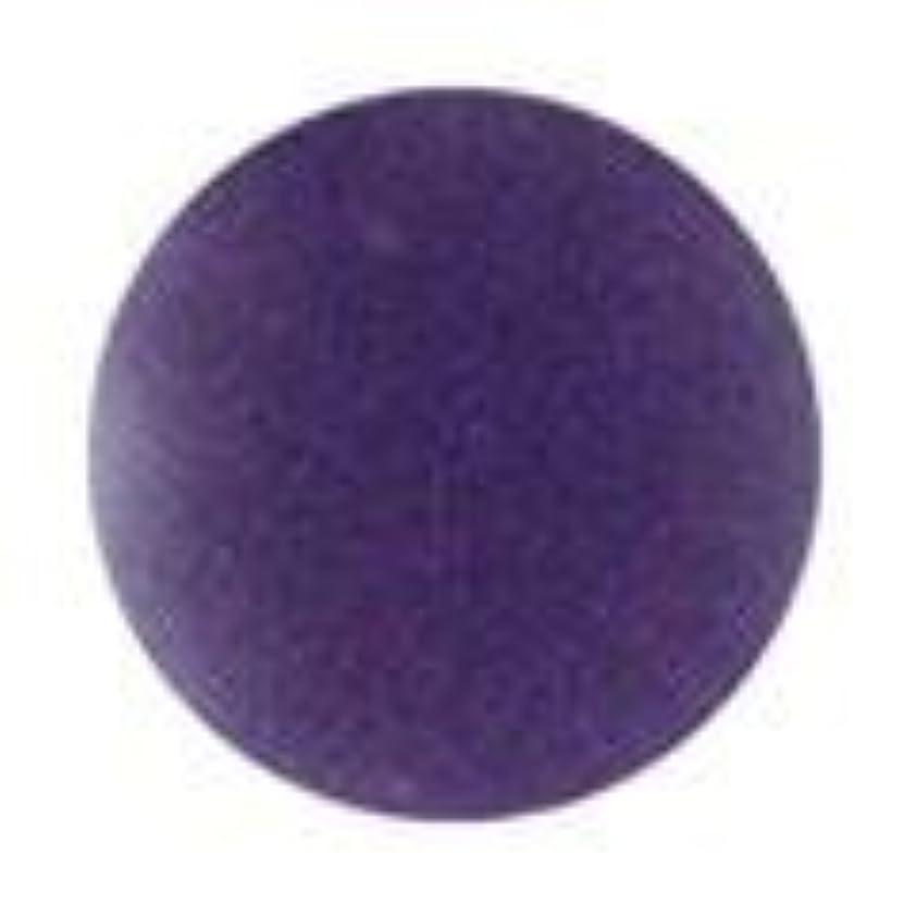 推定するトレイ静けさJessica ジェレレーション カラー 15ml  529 ビーナスワズハーネーム