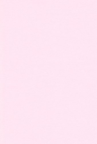 エスケント 色画用紙 四切 うすもも 100枚 210204