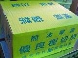 切炭6㎏x3-18kg、3箱、1送料、熊本産、揃い美2段箱入り、7Cm揃い、黒炭、揃いで箱入り扱いやすい
