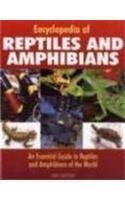Encyclopedia of Reptiles & Amphibians