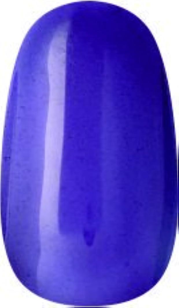 ラク カラージェル(65-クリアパープル)8g 今話題のラクジェル 素早く仕上カラージェル 抜群の発色とツヤ 国産ポリッシュタイプ オールインワン ワンステップジェルネイル RAKU COLOR GEL #65