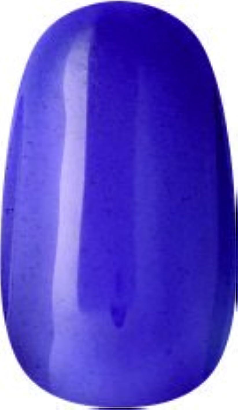 タービン自伝四半期ラク カラージェル(65-クリアパープル)8g 今話題のラクジェル 素早く仕上カラージェル 抜群の発色とツヤ 国産ポリッシュタイプ オールインワン ワンステップジェルネイル RAKU COLOR GEL #65