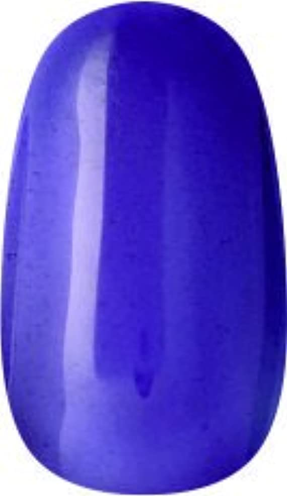 ポジションセットアップポジションラク カラージェル(65-クリアパープル)8g 今話題のラクジェル 素早く仕上カラージェル 抜群の発色とツヤ 国産ポリッシュタイプ オールインワン ワンステップジェルネイル RAKU COLOR GEL #65