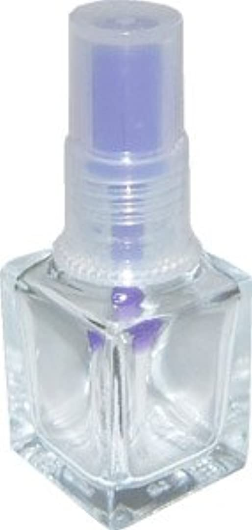 長方形中毒ラリーベルモントNatural Field エナメルボトル(パープル)6本セット