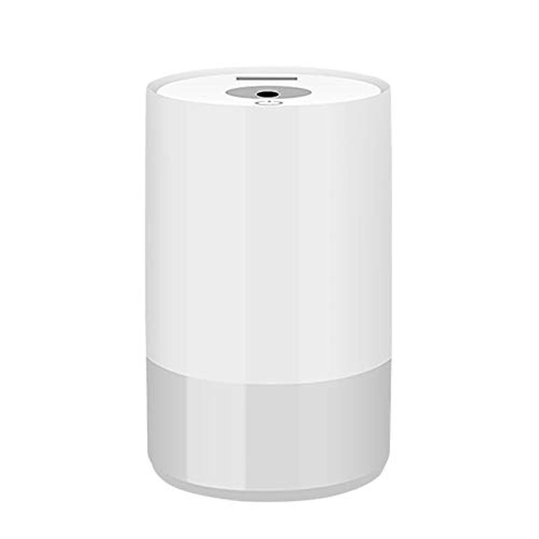 空気加湿器オフィスホーム車デスクトップホテル多機能ミニ噴霧器水和小型電気器具 (色 : Gray)