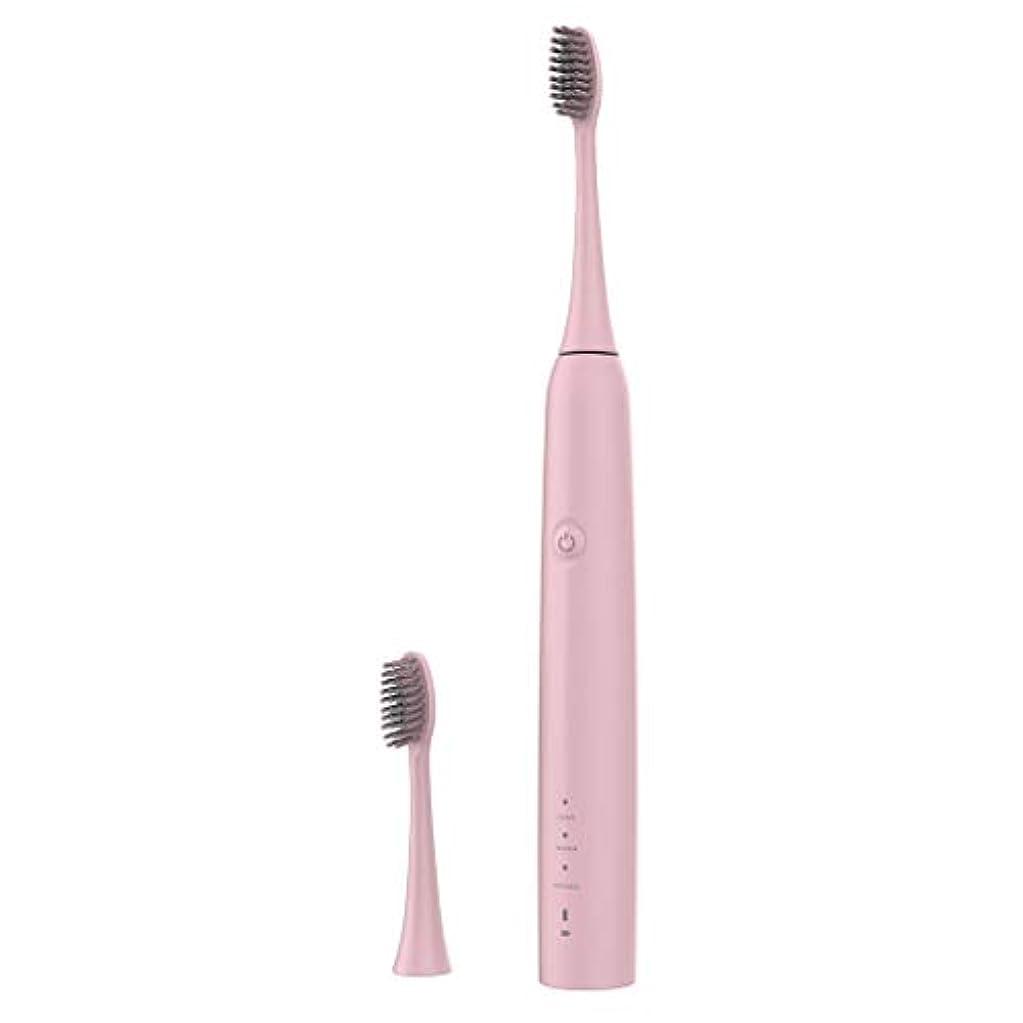 Lazayyii 新しいT2P電動歯ブラシ 携帯用 口腔衛生 電気マッサージ 口腔ケア (ピンク)