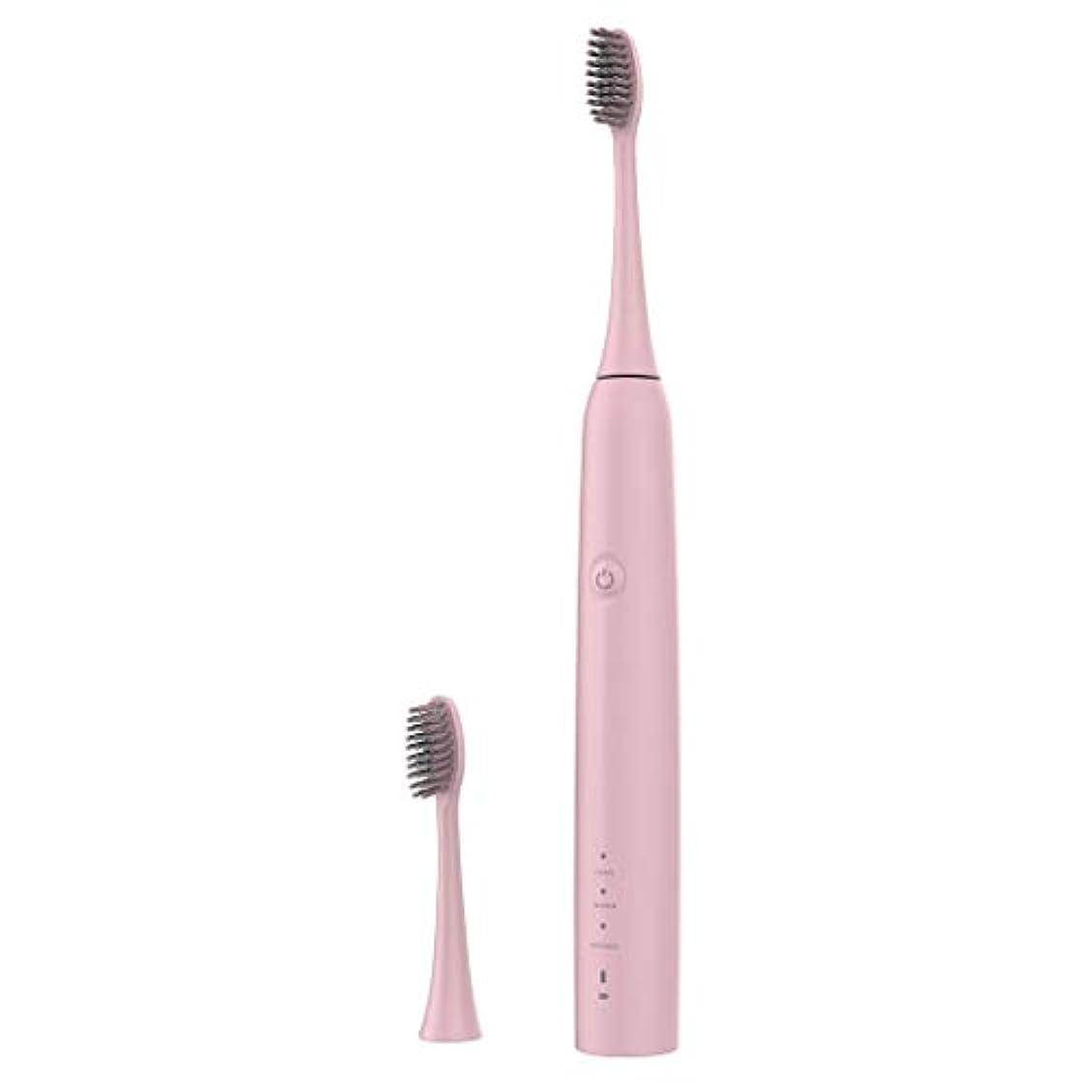 またね非常に怒っています共感するLazayyii 新しいT2P電動歯ブラシ 携帯用 口腔衛生 電気マッサージ 口腔ケア (ピンク)