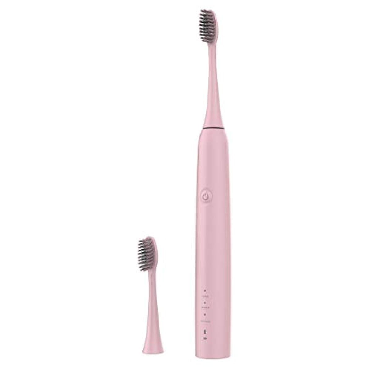 一致するログ軽量Lazayyii 新しいT2P電動歯ブラシ 携帯用 口腔衛生 電気マッサージ 口腔ケア (ピンク)