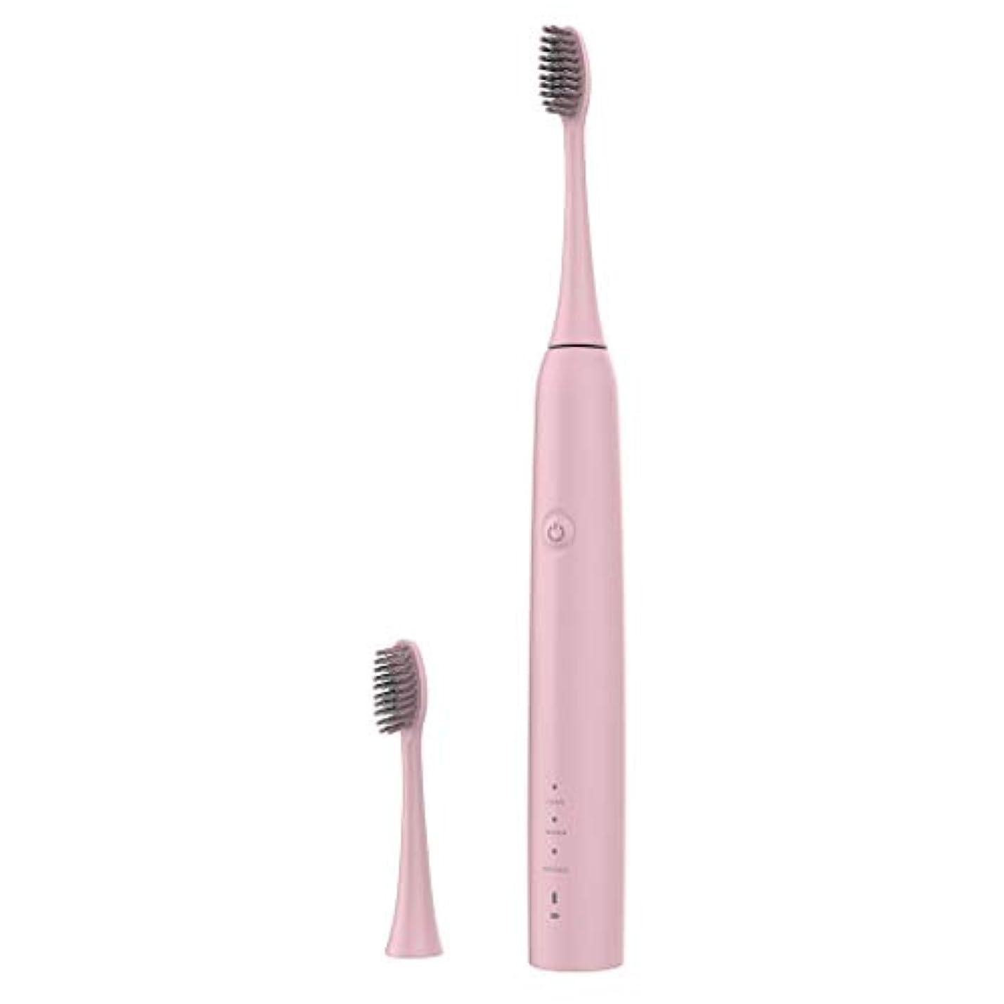 降臨曲線汚染Lazayyii 新しいT2P電動歯ブラシ 携帯用 口腔衛生 電気マッサージ 口腔ケア (ピンク)