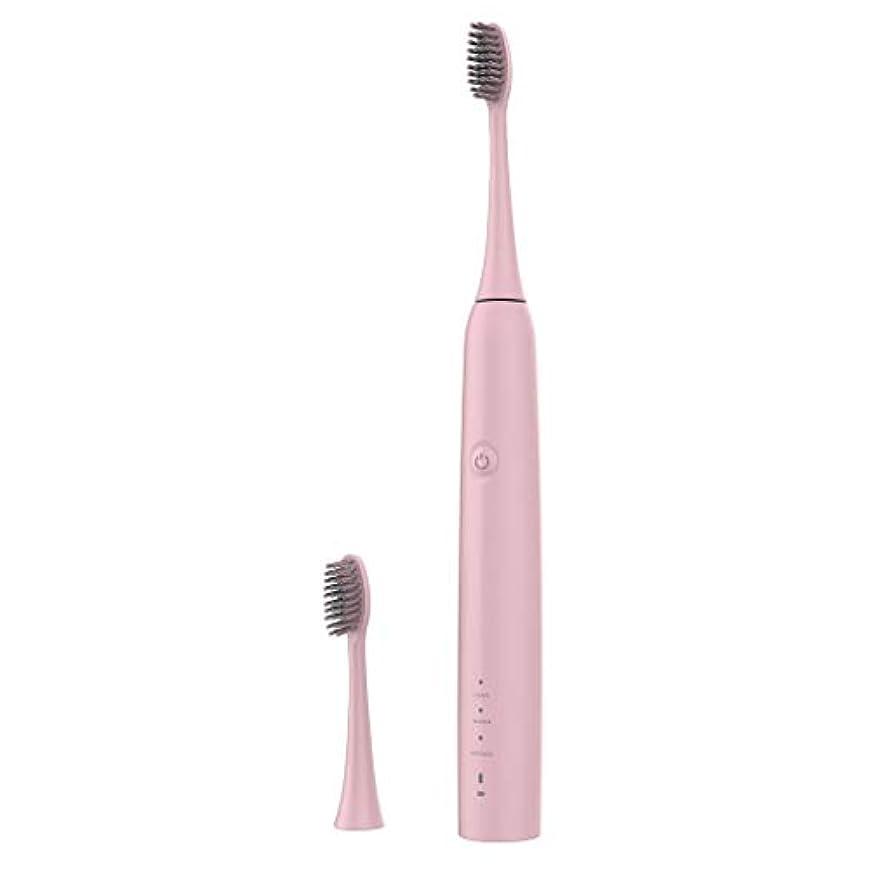 騒々しいポップ植物学Lazayyii 新しいT2P電動歯ブラシ 携帯用 口腔衛生 電気マッサージ 口腔ケア (ピンク)