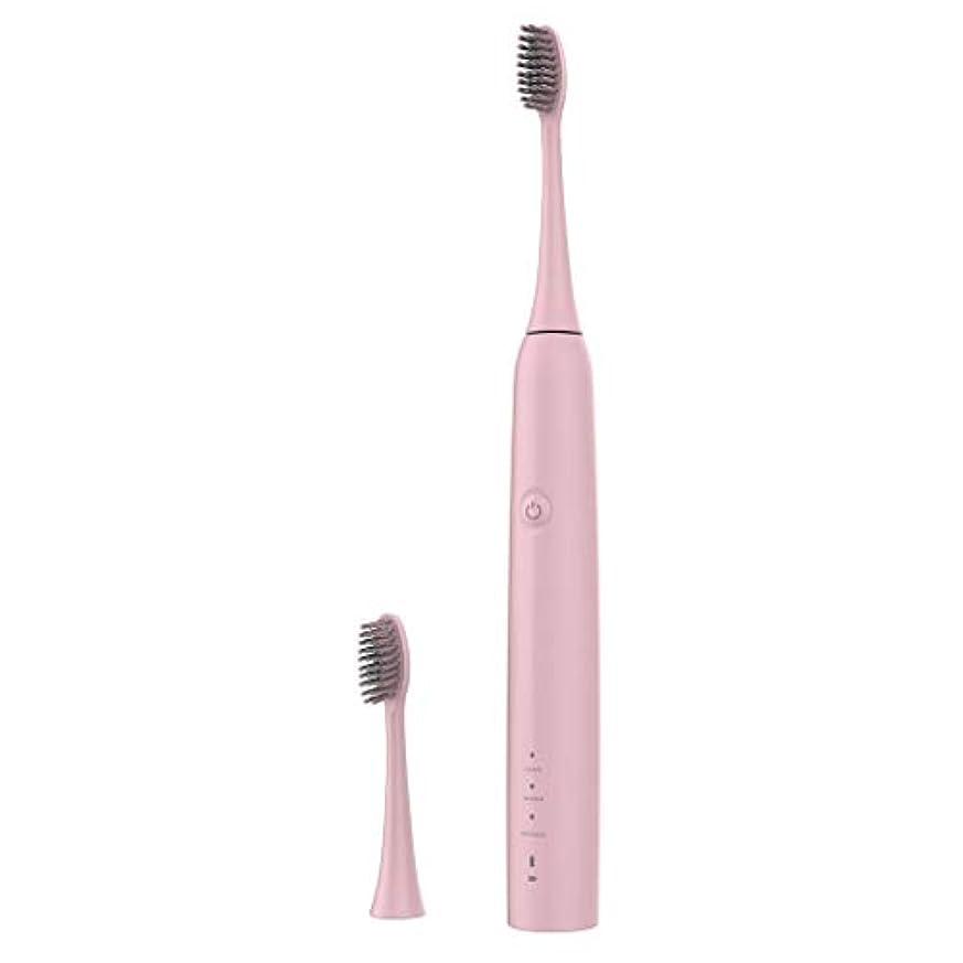 ぬいぐるみ加速する取得するLazayyii 新しいT2P電動歯ブラシ 携帯用 口腔衛生 電気マッサージ 口腔ケア (ピンク)