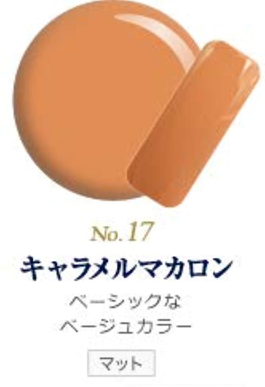 ピューノベルティミスカラージェル 発色抜群 削らなくてもオフが出来る 新グレースジェルカラーNo.11~No.209 (キャラメルマカロン)