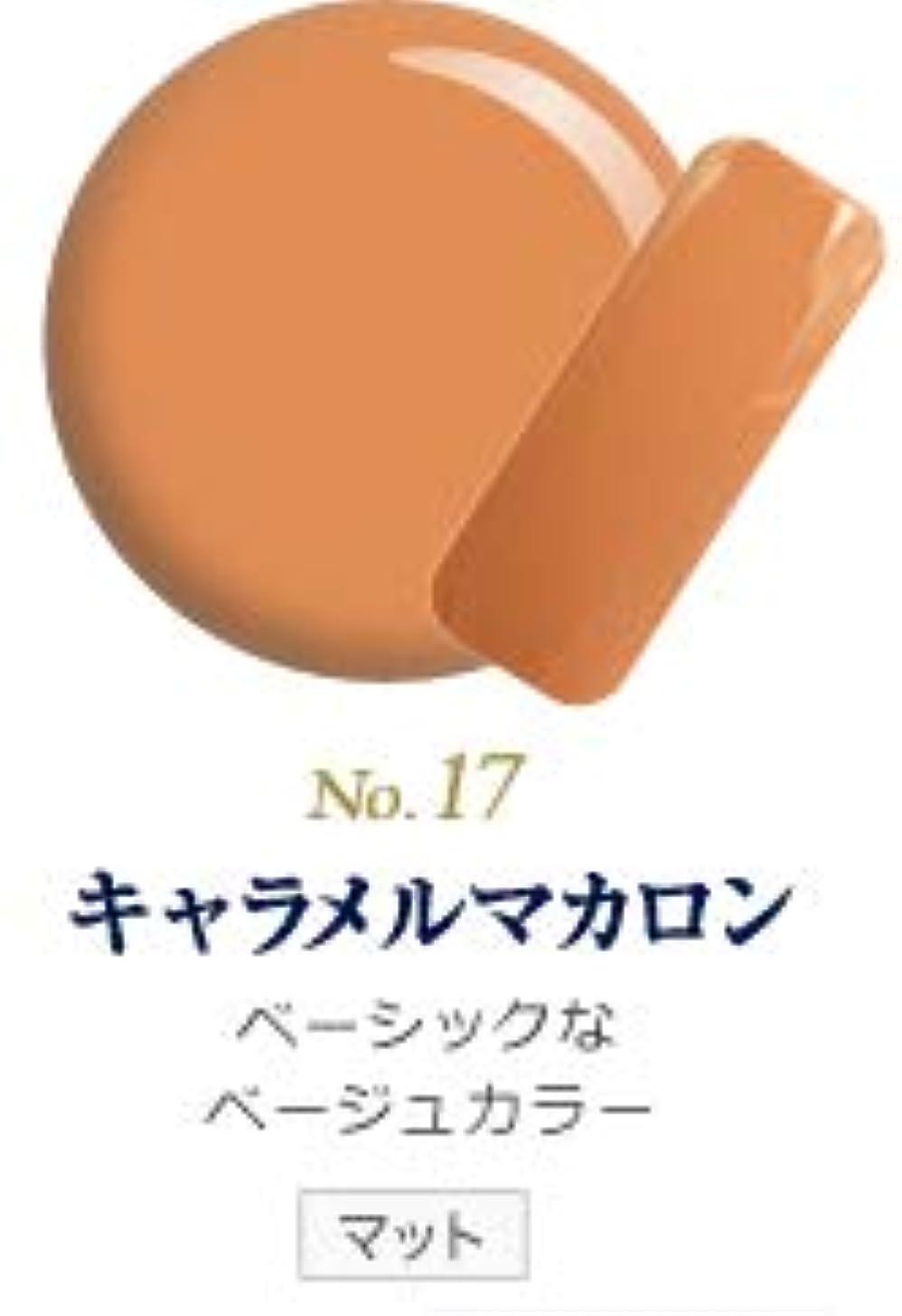 うつ事プログレッシブ発色抜群 削らなくてもオフが出来る 新グレースジェルカラーNo.11~No.209 (キャラメルマカロン)