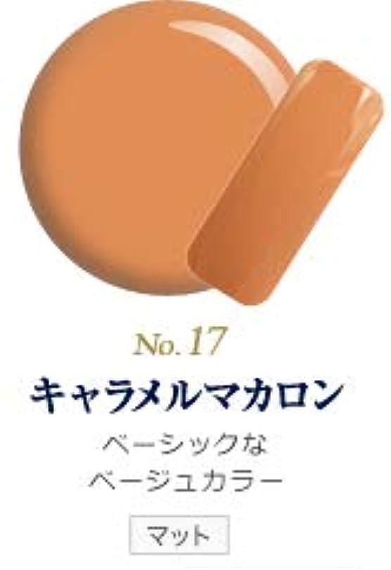 バー見分ける偽造発色抜群 削らなくてもオフが出来る 新グレースジェルカラーNo.11~No.209 (キャラメルマカロン)