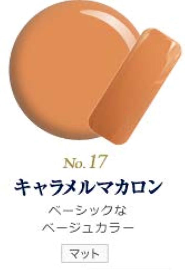 必要とするホバート温かい発色抜群 削らなくてもオフが出来る 新グレースジェルカラーNo.11~No.209 (キャラメルマカロン)
