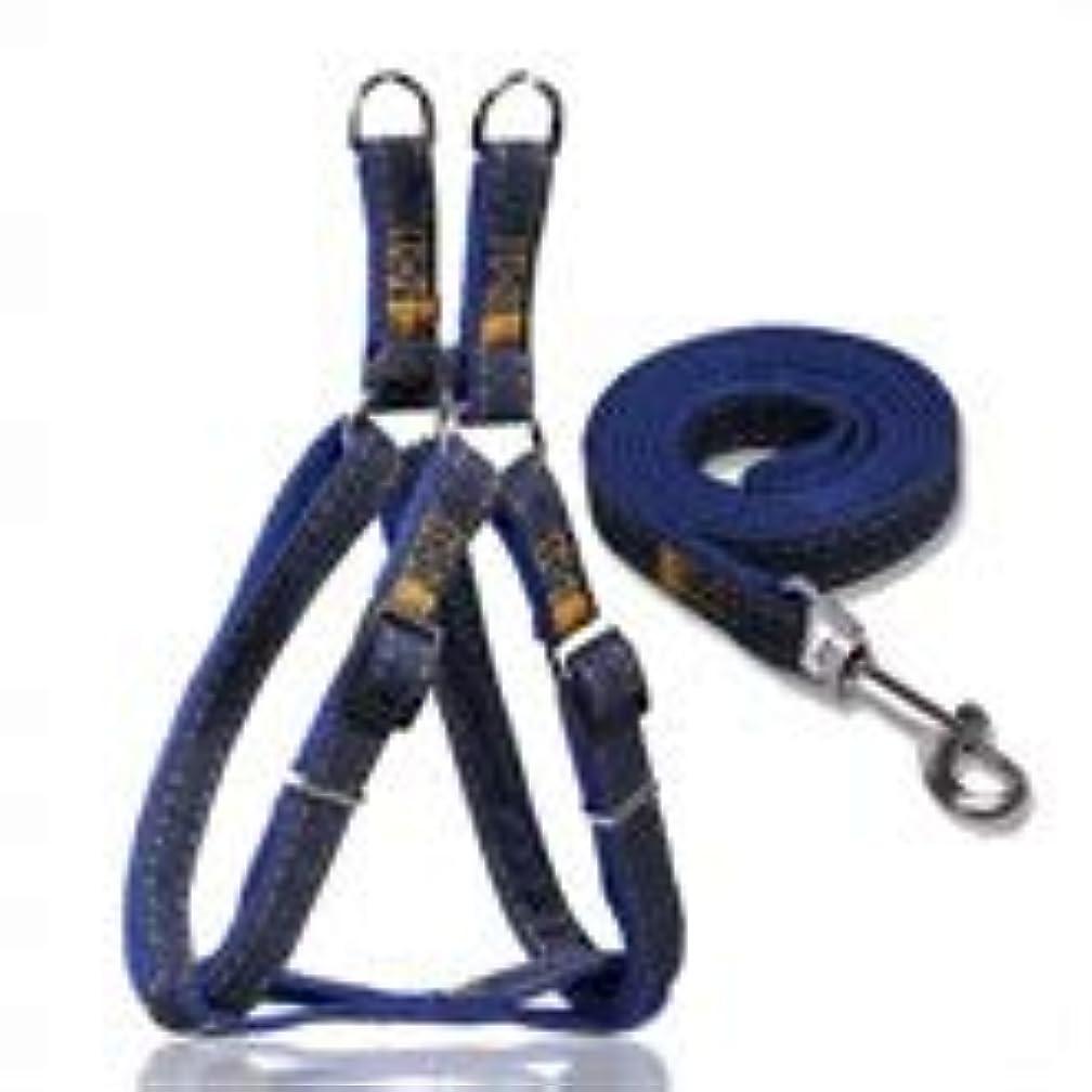 対請求等価Jiabei 牽引ロープのひもが付いている身につけられる犬ロープペット箱の革紐 (色 : As-picture, サイズ : 1meter)