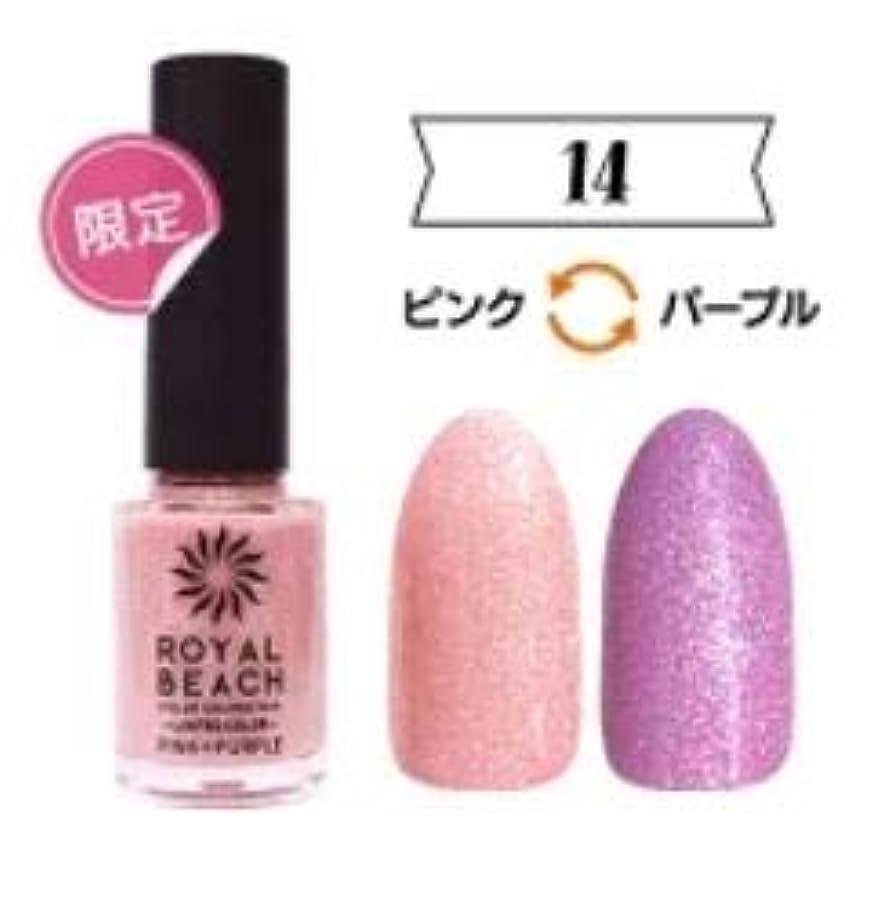お気に入りくまベリーROYALBEACH ロイヤルビーチ カラーチェンジネイル 8ml 太陽光で色が変わるマニキュア 限定色 (【限定】ピンク&パープル)