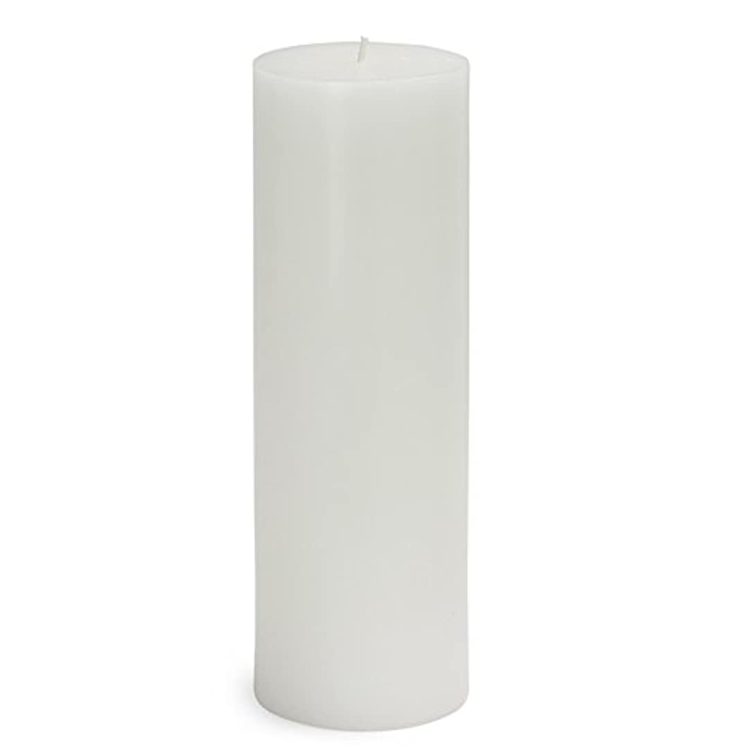 受粉者医学ゼロZest Candle CPZ-093-12 3 x 9 in. White Pillar Candles -12pcs-Case - Bulk