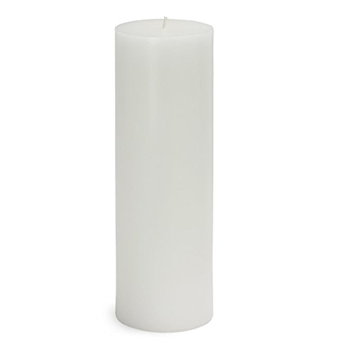 恒久的競争力のあるぬいぐるみZest Candle CPZ-093-12 3 x 9 in. White Pillar Candles -12pcs-Case - Bulk