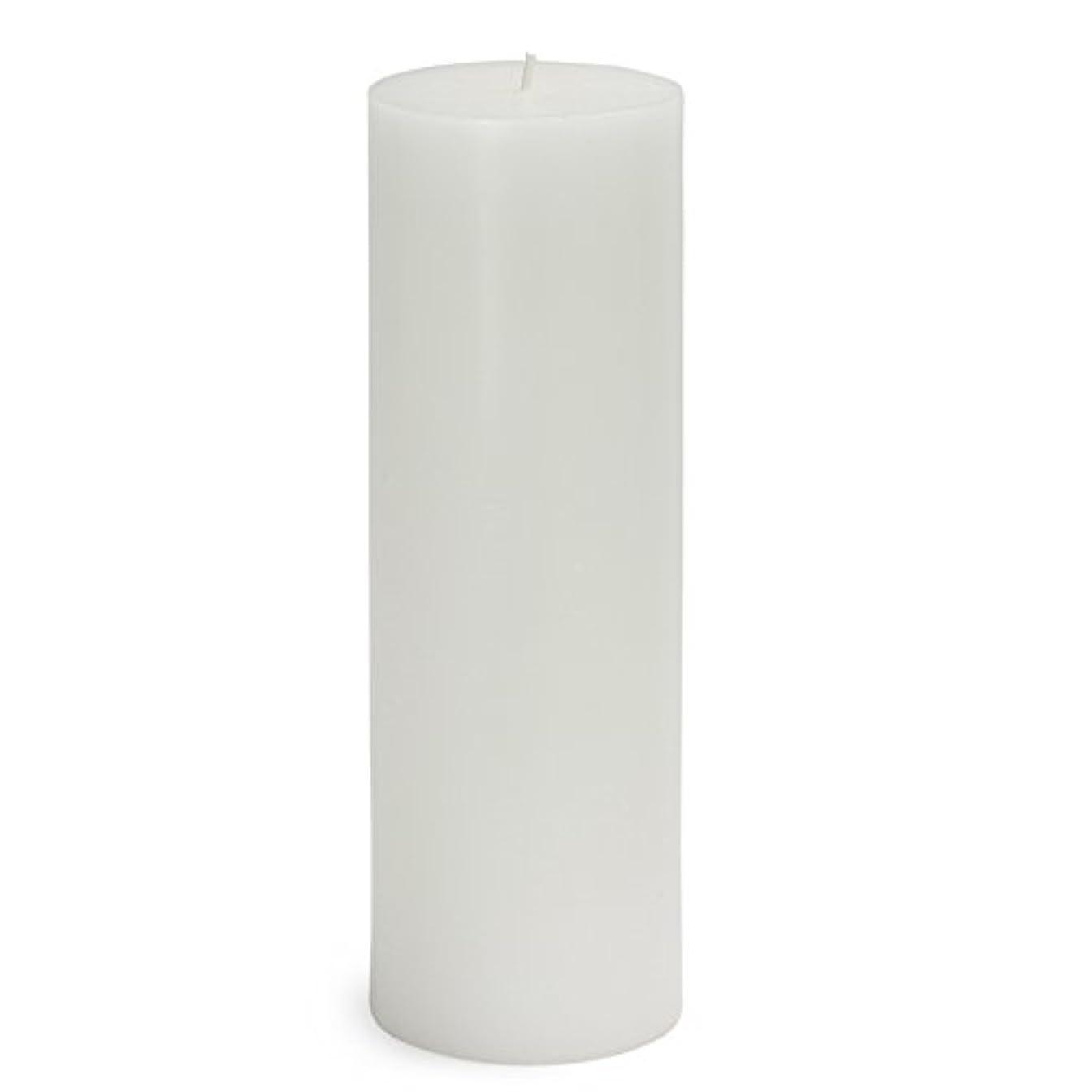 スリラーふくろう教会Zest Candle CPZ-093-12 3 x 9 in. White Pillar Candles -12pcs-Case - Bulk