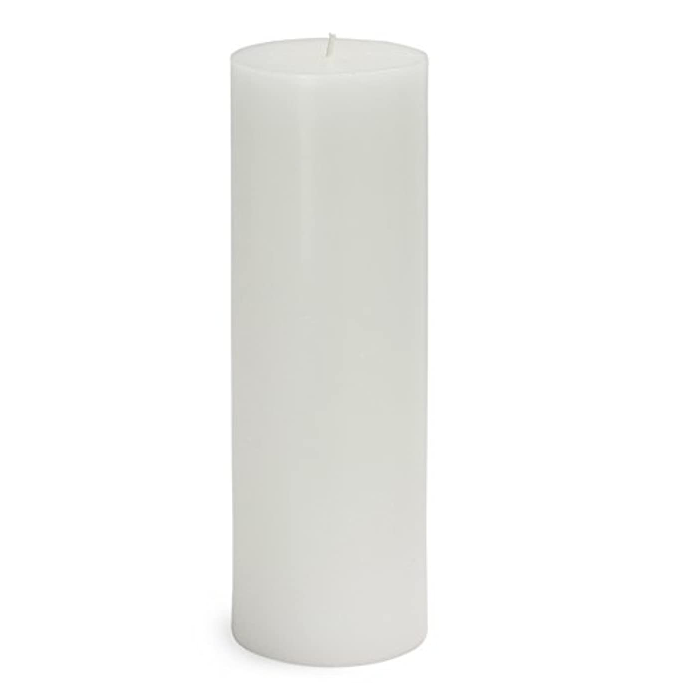 曲がった艦隊非互換Zest Candle CPZ-093-12 3 x 9 in. White Pillar Candles -12pcs-Case - Bulk