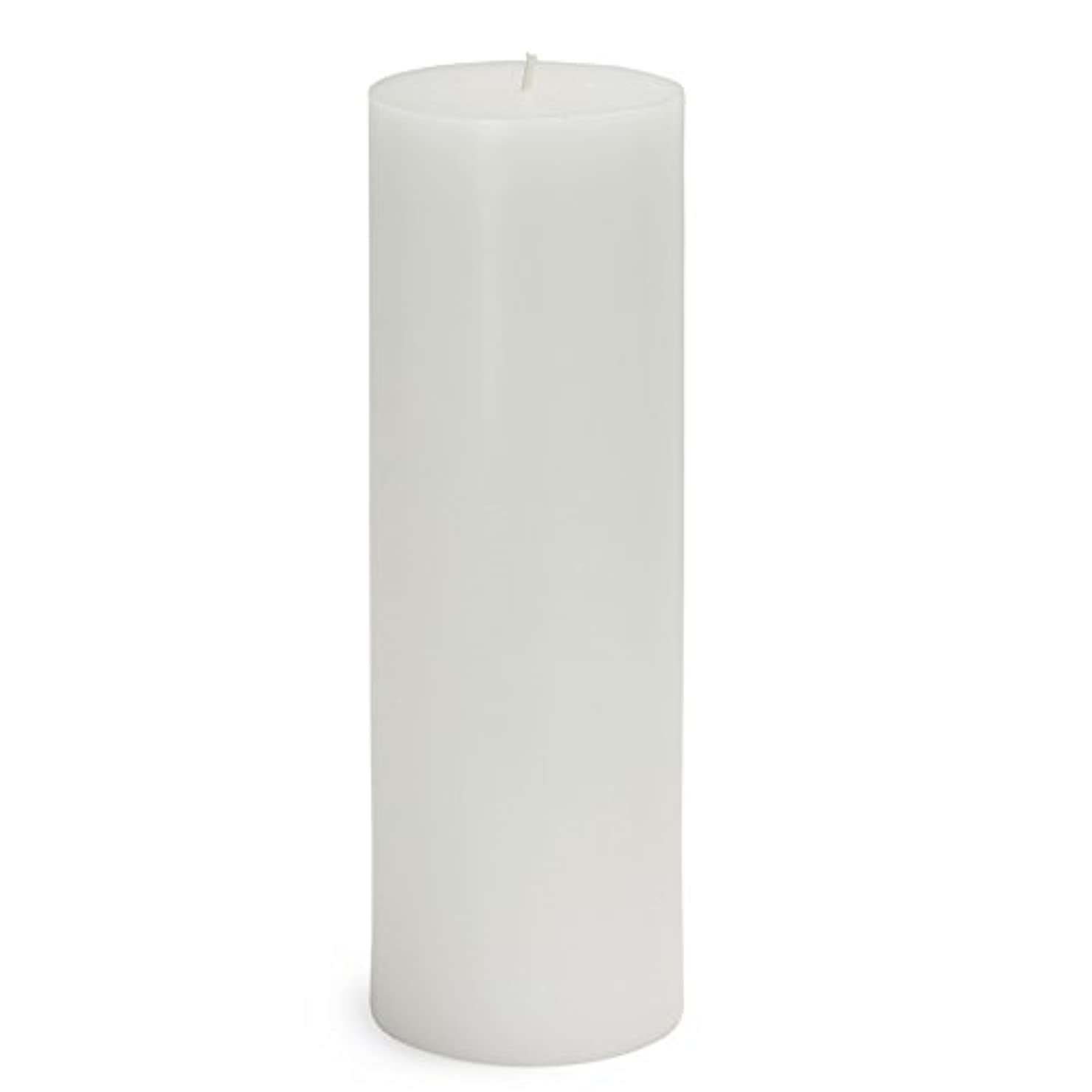 テレックス意気揚々怒りZest Candle CPZ-093-12 3 x 9 in. White Pillar Candles -12pcs-Case - Bulk