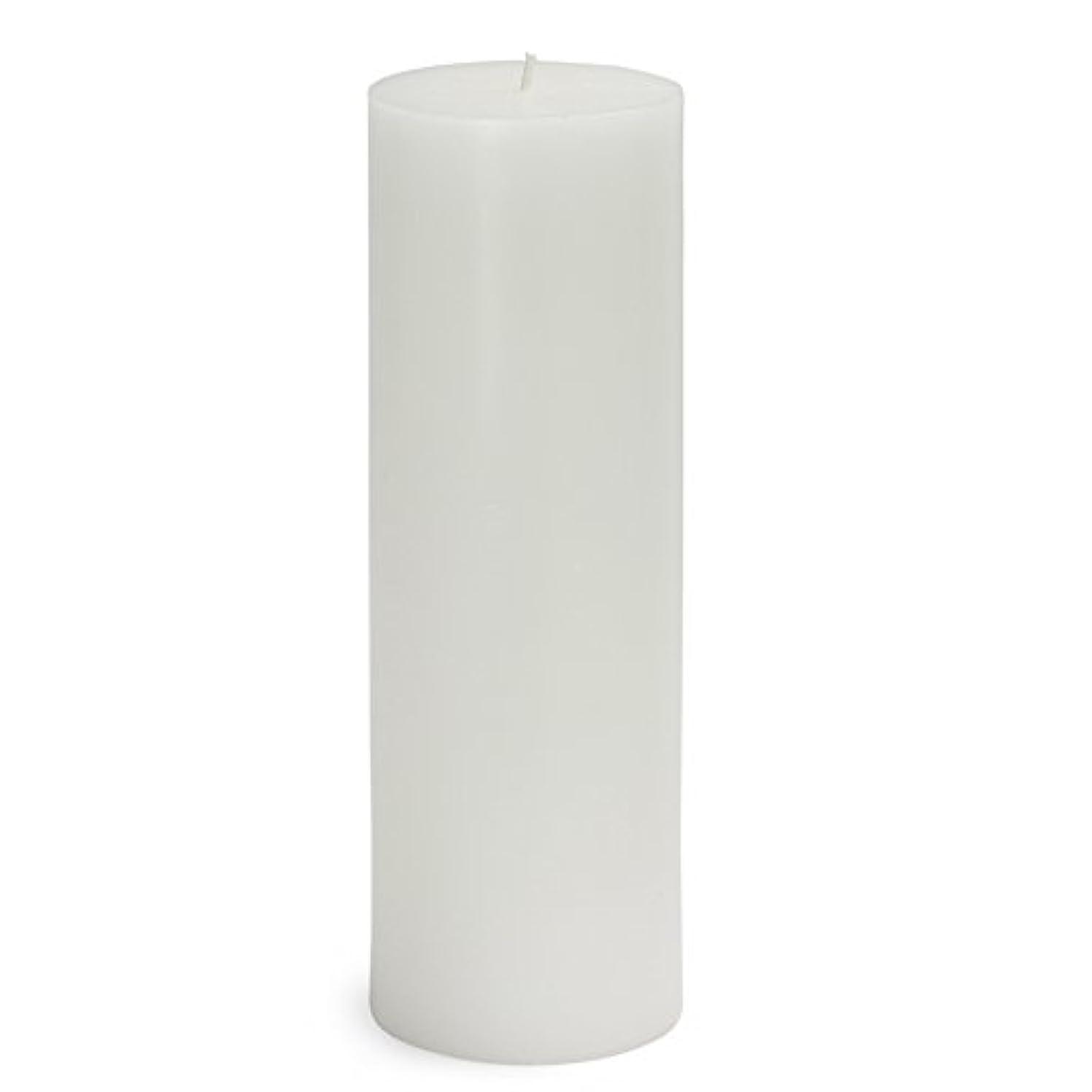 流す塩辛い怖いZest Candle CPZ-093-12 3 x 9 in. White Pillar Candles -12pcs-Case - Bulk
