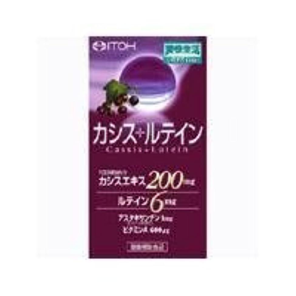 長々と生産的マニフェスト井藤漢方製薬 カシス+ルテイン 300mg×60球 2個セット