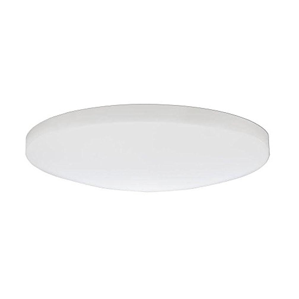 必要としている多分経度Lithonia Lighting DSATL 13 M4 Replacement Glass Diffuser, 13', White [並行輸入品]