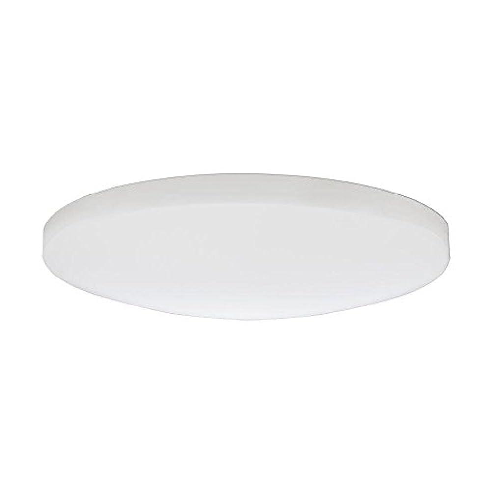 目覚めるアシュリータファーマンアルプスLithonia Lighting DSATL16 M4 Replacement Glass Diffuser, 16', White [並行輸入品]
