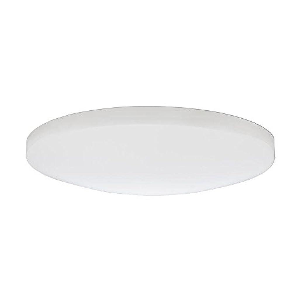 ファイアル盟主ピクニックをするLithonia Lighting DSATL16 M4 Replacement Glass Diffuser, 16', White [並行輸入品]