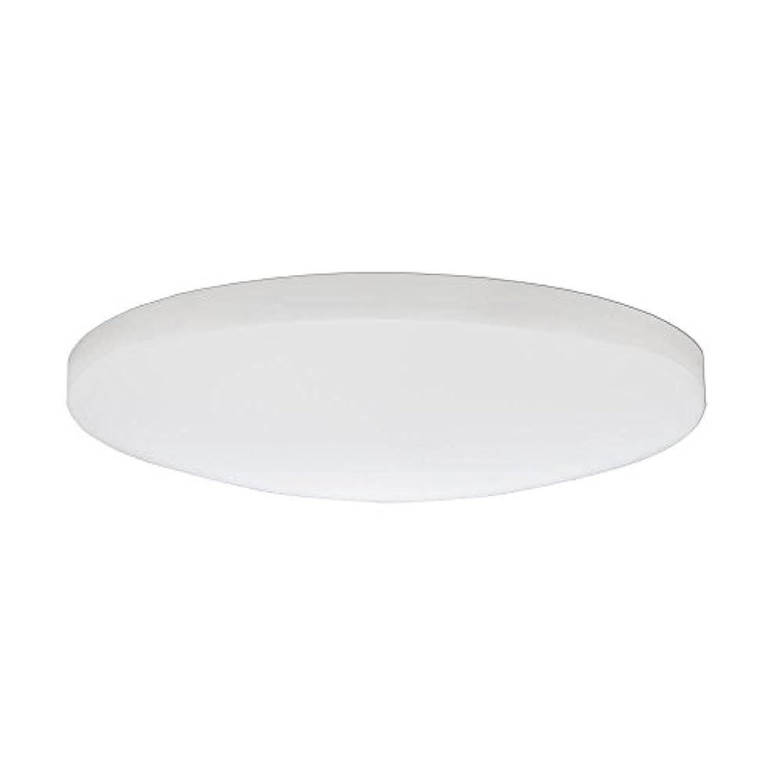 虐待隙間カウボーイLithonia Lighting DSATL 13 M4 Replacement Glass Diffuser, 13', White [並行輸入品]