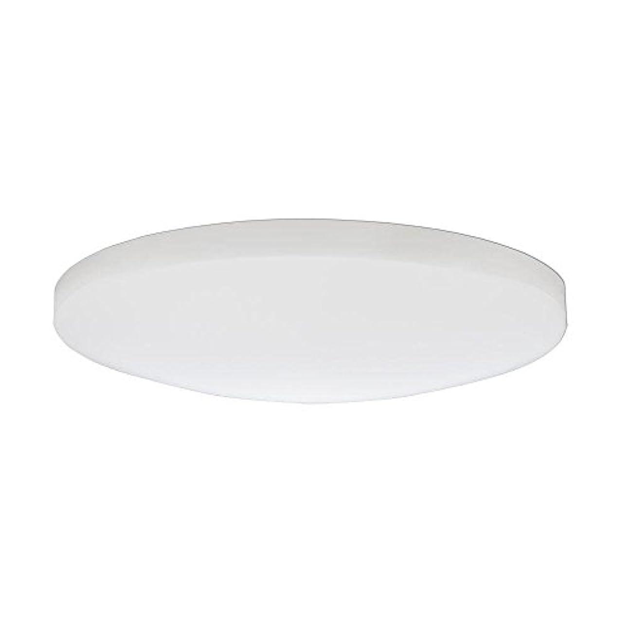 神経日常的に達成可能Lithonia Lighting DSATL 13 M4 Replacement Glass Diffuser, 13', White [並行輸入品]