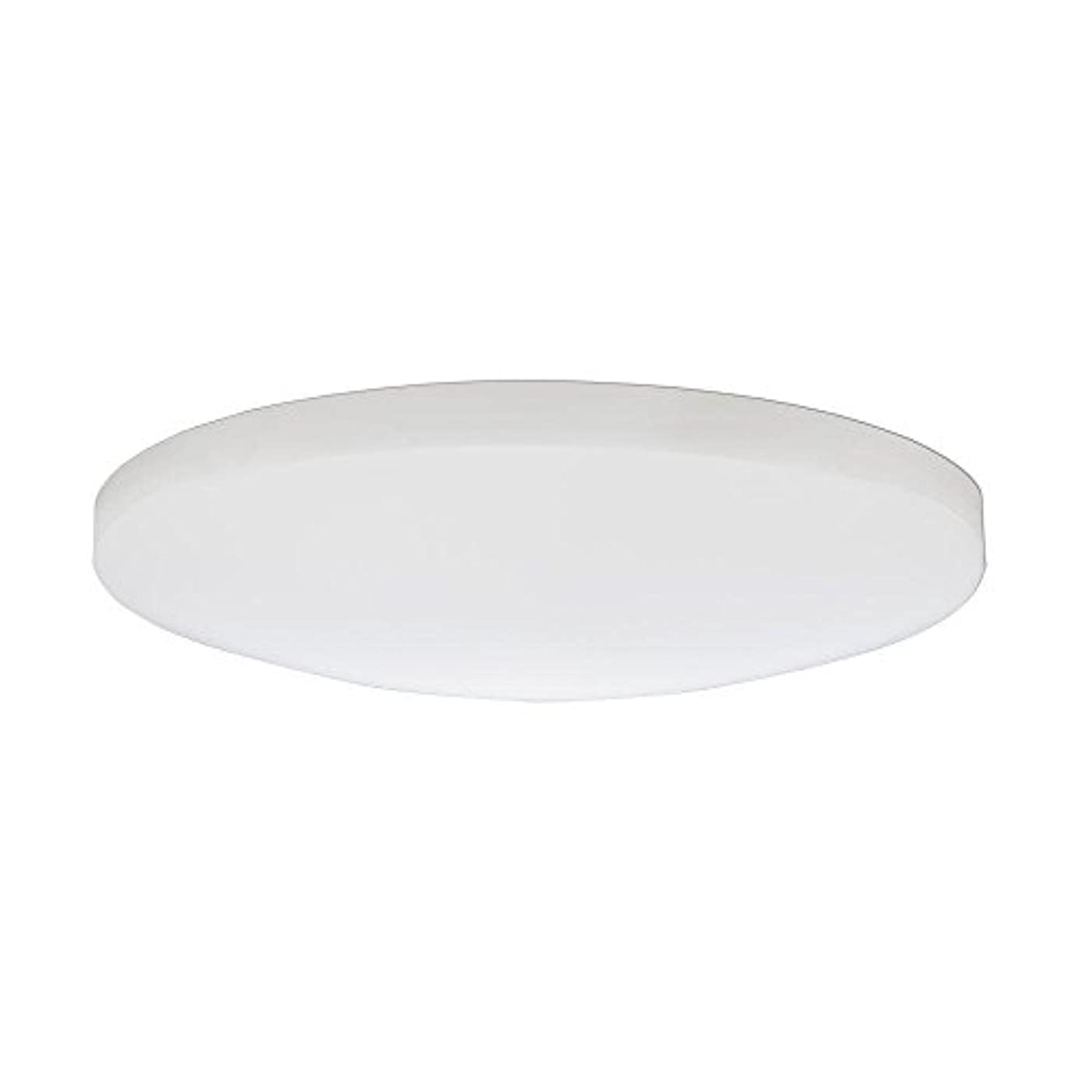 バンド冗談で痛みLithonia Lighting DSATL16 M4 Replacement Glass Diffuser, 16', White [並行輸入品]