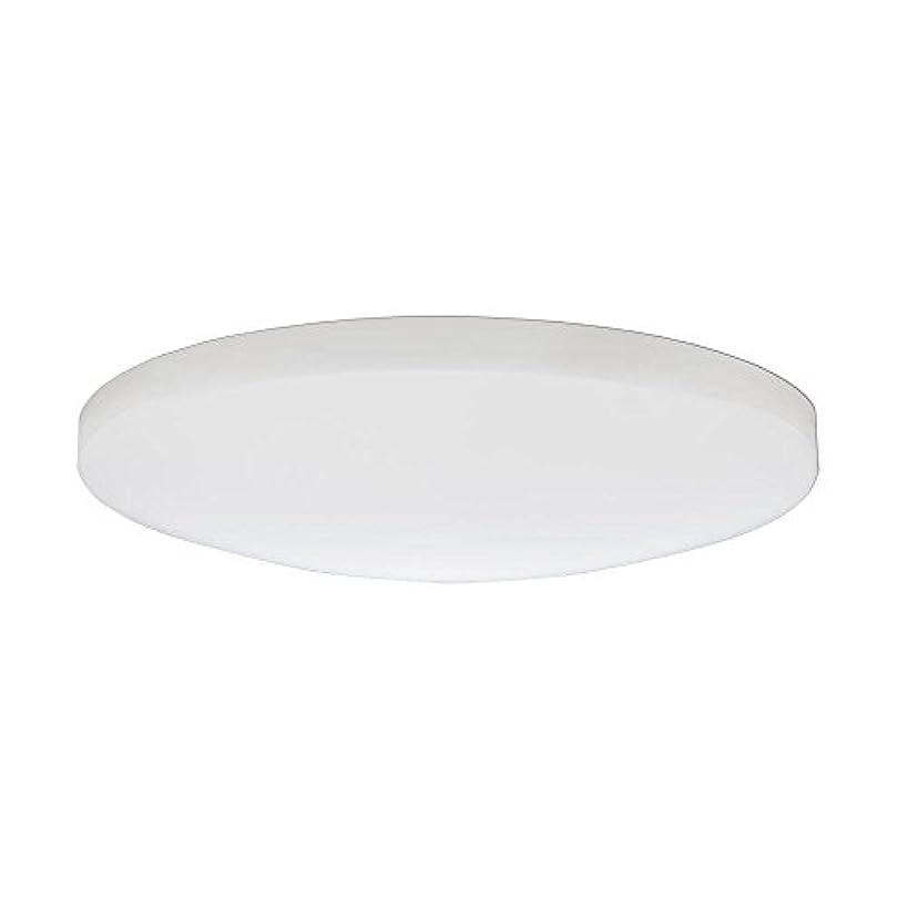検索エンジン最適化ホームレスかみそりLithonia Lighting DSATL 13 M4 Replacement Glass Diffuser, 13', White [並行輸入品]